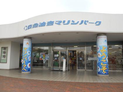 20110506.jpg